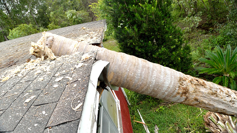 Storm damage on roof